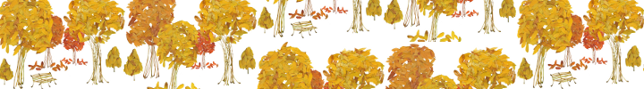 Fallen_leaves_scaled_preview