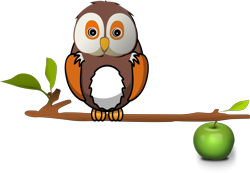 Owl-on-branch_preview