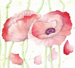 Poppies_cropped_3_preview