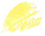 8-18-2010_2_36_33_pm_thumb