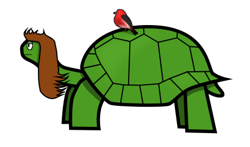 Tortoise_preview