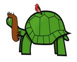 Tortoise_thumb
