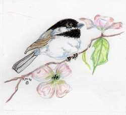 Chickadee_for_emboss_cards063_preview