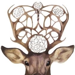 Deer-head_preview