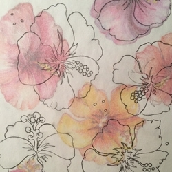 Hibiscus_sketch_preview