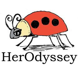 Ladybug.psd_preview