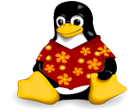 Casualtux-256_thumb