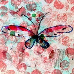 Profile_butterfly_preview