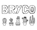 Bryco_thumb