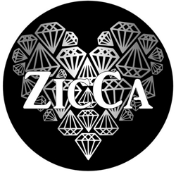 Zicca_logo_ny3_preview