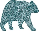 Bear_thumb