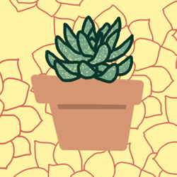 Succulent_icon_preview