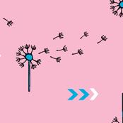 Pink_dandelions_preview