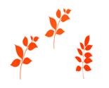 Orange_leaves_2017_thumb