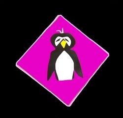 Llukks_penguin_picture_preview