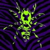 Profilbild_spinne_preview