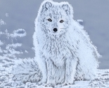 Artic_fox_cropped_lunapic_reduced_thumb