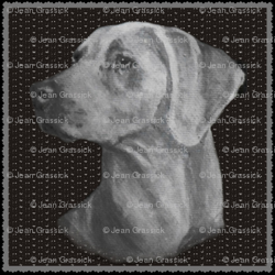 Weim_preview
