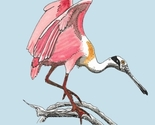 Icon_spoonbill_2_thumb