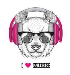 Image-panda-glasses-headphones-hip-hop-hat-vector-illustration-70981243_preview