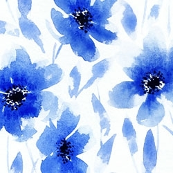 Blue_floral_profile_pic_preview