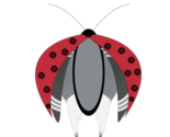 Ladybug3-01_thumb