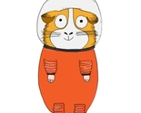 Spaceguineapig_thumb