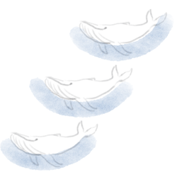 Whale_preview
