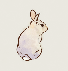Greybunny_preview