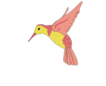 Hummingbirdpink_thumb