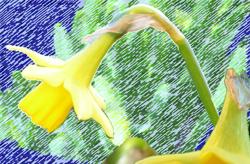 Springtime_cheer3_preview