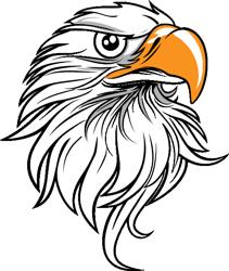 Eagle-head-11-hi_preview