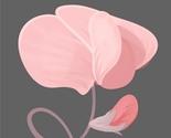 Avatar_spoonflower_sweet_pea_thumb