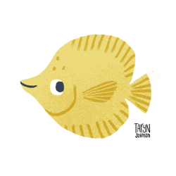 Yellowtang_name2_preview