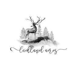 Lackland_acres_preview