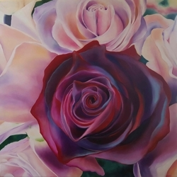 Roses_for_tasman_auction_preview