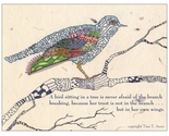 Bird_card_thumb