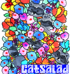 Catsalad2_preview