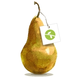 New_shop_icon_pear_and_tag_white_bckgrnd_preview