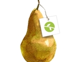 New_shop_icon_pear_and_tag_white_bckgrnd_thumb