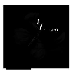 2016-05_logo_quadrat_preview