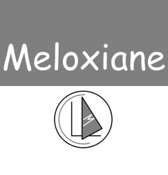 Meloxiane_123_preview