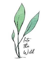 Into_the_wild_logo_web_white_back-03_preview