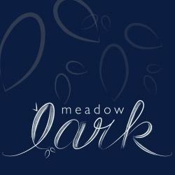 Meadowlark_square_preview
