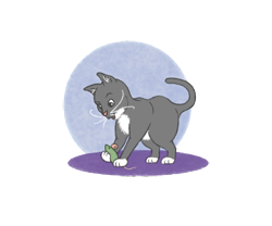Playcat_preview