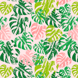 Shop_image_monstera_preview