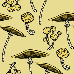 Yellowshroom_1_preview