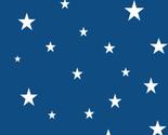 Stars_2020_small_thumb