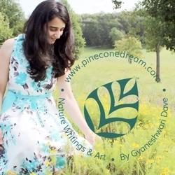 Gyaneshwari_dave_2021_spoonflower_small_preview