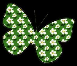 Daisy_butterfly_avitar_preview